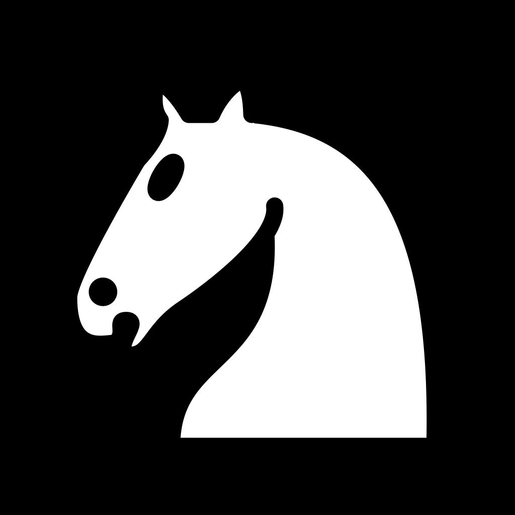 Dambretes un šaha nodarbību grafiks