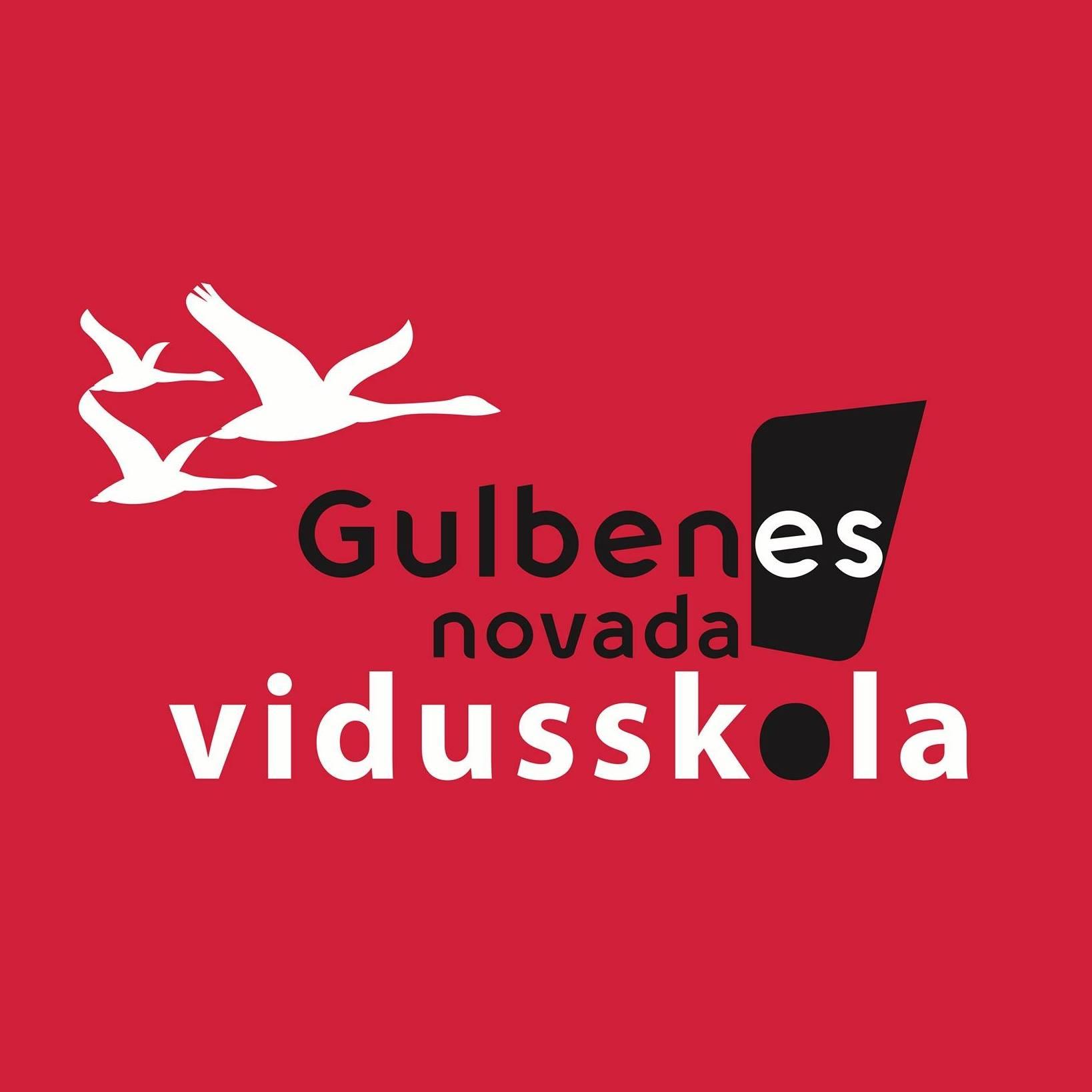 Gulbenes novada vidusskolas vecākā lietveža amatam pieteikties līdz 18.10.2021.